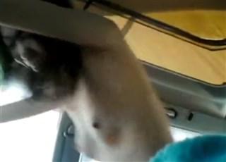 《個人撮影》素人夫婦のリベンジポルノ!車内で激しく愛し合う様子を隠し撮りした動画が離婚後ネット拡散!